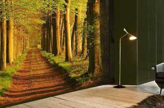 дорога в лесу на стене